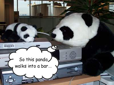 Two stuffed toy pandas, one with a thought bubble saying 'So this panda walks into a bar...'